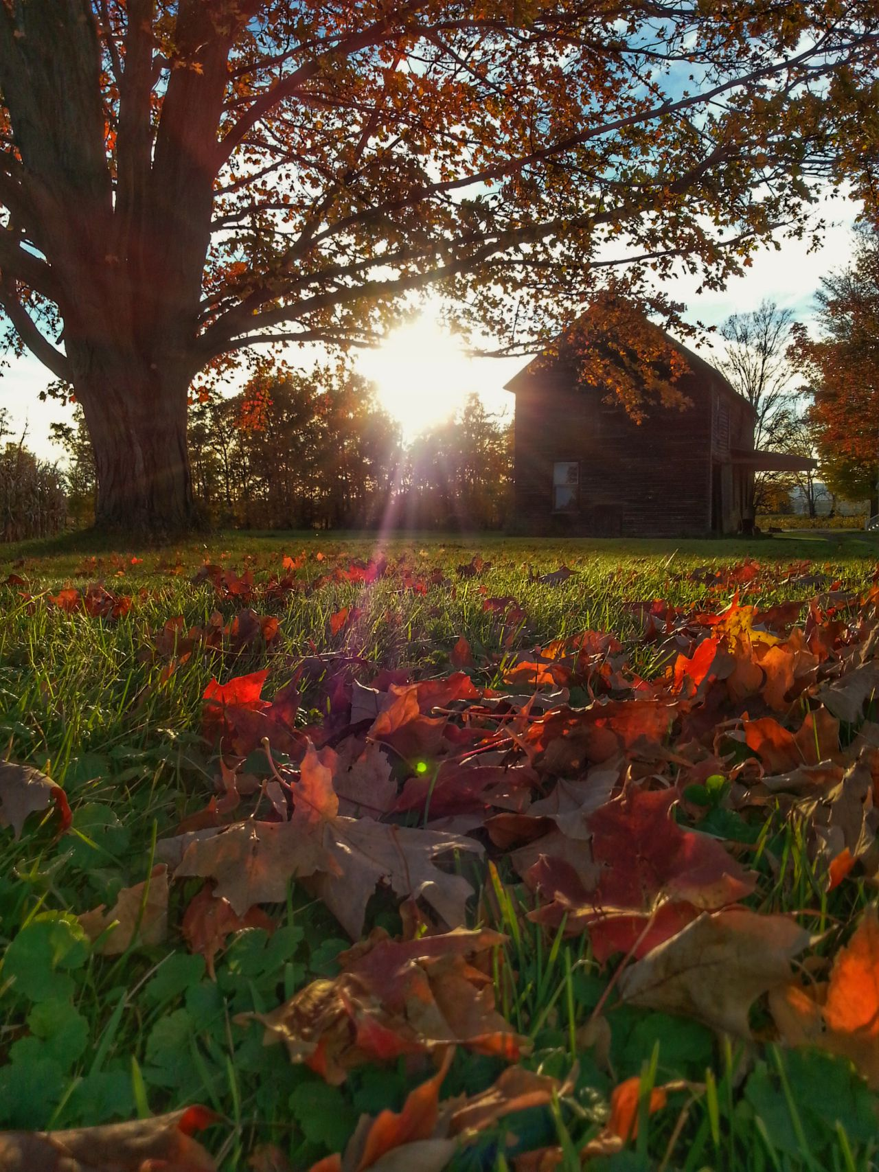 Capturing fall in Yates County (photo)