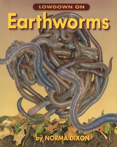 Lowdown On Earthworms